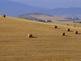 Hay Bales, Val d'Orcia, Siena Province, Tuscany, Italy, Europe