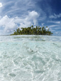 Rangiroa, Tuamotu Archipelago, French Polynesia, Pacific Islands, Pacific