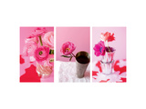 Fun Pink Bouquet III