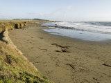 Beach North of San Simeon, California
