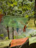 Colorful Buddhist Prayer Flags, Wushan, China