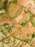 This is Heavily Terraced Dryland Farming, Kenya