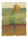 Tulip Abstract, no. 1