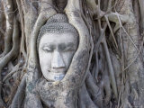 Buddha Head, Wat Phra Mahathat, Ayutthaya, Thailand