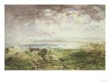 Scottish Shore, 19th Century