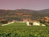 Opus One Winery, Napa Valley, California