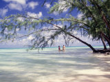 View of Couple Wading in Water, Cayman Islands