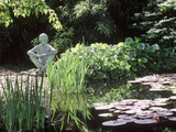 Pond, with Nymphaea, Iris, Pebble Beach & Sitting Statue