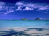 Shadow of Palm Trees on Lanikai Beach, Oahu, HI