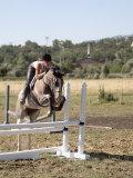 Training a Show Jumper