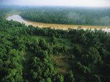 An Aerial View of Borneo Asian Elephant Habitat