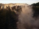 The Horses Run Home Through a Cloud of Dust