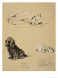 Bull-Terrier, Spaniel and Sealyhams, 1930, Just Among Friends, Aldin, Cecil Charles Windsor