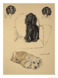 Spaniels, 1930, Just Among Friends, Aldin, Cecil Charles Windsor