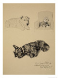 Wire-Haired Terrier, Aberdeen and West Highlander, 1930, Just Among Friends, Aldin, c.C. Windsor