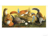 The Squirrel Family, Illustration from Once Upon a Time