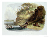 Beaver Hut on the Missouri, Plate 17, Travels in the Interior of North America