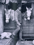 Capt. Oates and Two of the Ponies on the Terra Nova, from Scott's Last Expedition