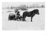 Children on Pony Drawn Sled Photograph