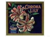 Corona Lily Orange Label - Corona, CA