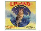 Owl Orange Label - Upland, CA