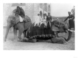 Men Riding Elephants in India Photograph - India