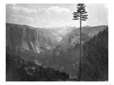 Yosemite National Park, Yosemite Valley Photograph - Yosemite, CA