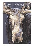 New Hampshire - Moose Up Close