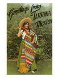 Greetings from Tijuana, Senorita in Sarape