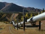Trans-Alaska Pipeline at Squirrel Creek