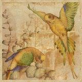 Songbirds II
