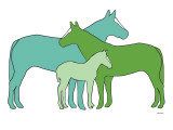 Green Horse Herd