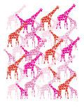 Pink Giraffe Pattern