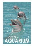 Visit the Aquarium, Dolphins Scene