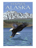 Haines, Alaska, Eagle Fishing