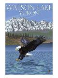 Eagle Fishing, Watson Lake, Yukon