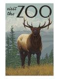Visit the Zoo, Elk Solo