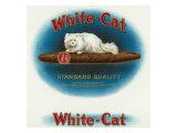 White-Cat Brand Cigar Box Label, Persian Cat