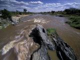 Mara River, Masai Mara National Park, Kenya
