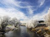 Taieri River, Sutton, Otago, South Island, New Zealand