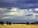 Approaching Storm, near Geelong, Victoria, Australia