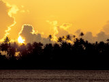 Palm Trees at Sunset, Bora Bora, French Polynesia