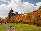 Quad in Autumn, University of Washington, Seattle, Washington, USA