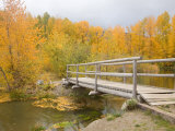 Autumn Color at Easton Ponds with Trail, Wenatchee National Forest, Washington, USA