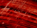 Brush Strokes in Red Paint
