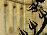 Ornate Black Wrought Iron Fence Detail