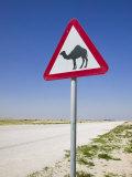 Road Sign-Road to Al-Zubar, Al-Zubara, Qatar