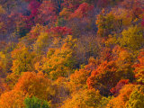 White Mountain National Park, New Hampshire, USA