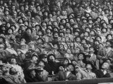 Opening Day of Baseball, Crowd Watching as Ball Flies Overhead