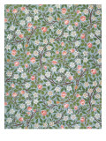 Clover Wallpaper, Paper, England, Late 19th Century